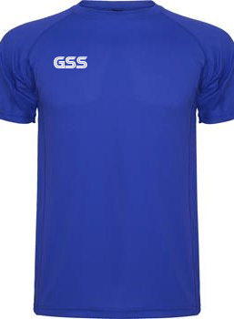 Camiseta Técnica GSS Basic Azul Royal